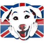 OhMyDog! Dog training school and dog behaviourist  in The Hague