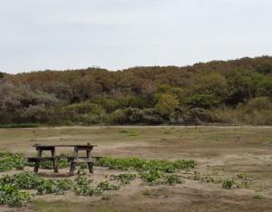 field_02